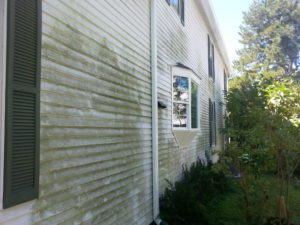 Before House Washing in Yorktown, VA by SoftWash Pros