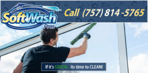 Window Cleaning in Virginia Beach, VA by the SoftWash Pros